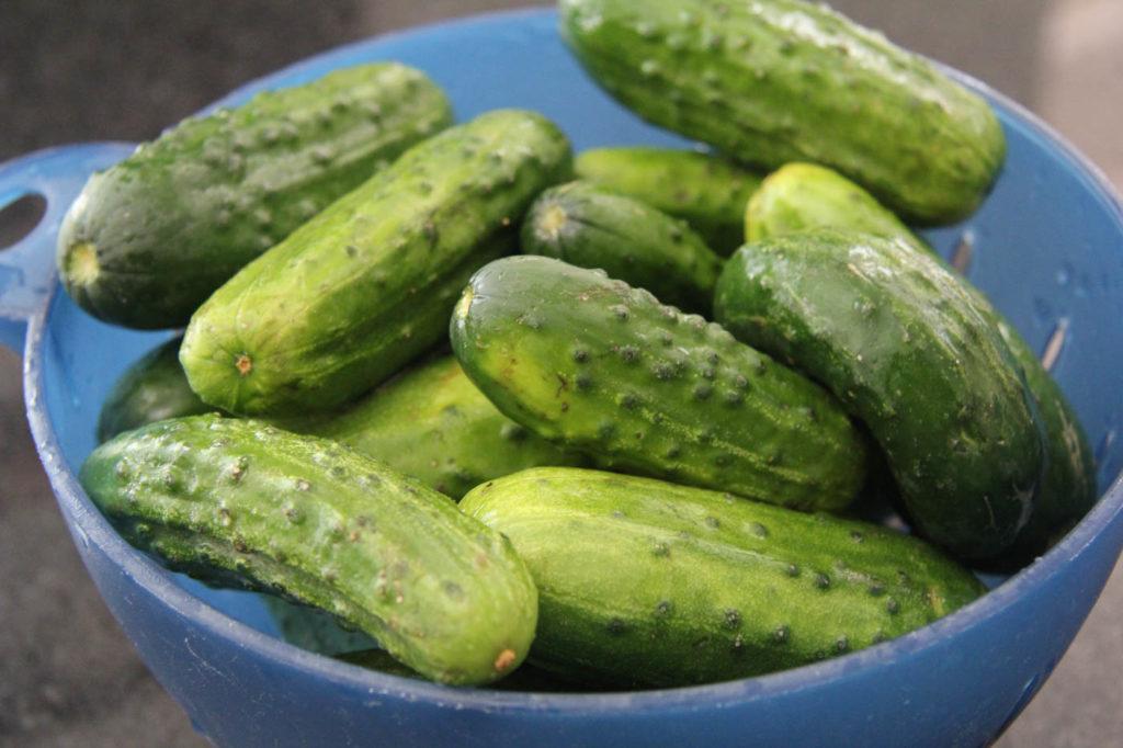 jess pryles burgermary recipe pickles
