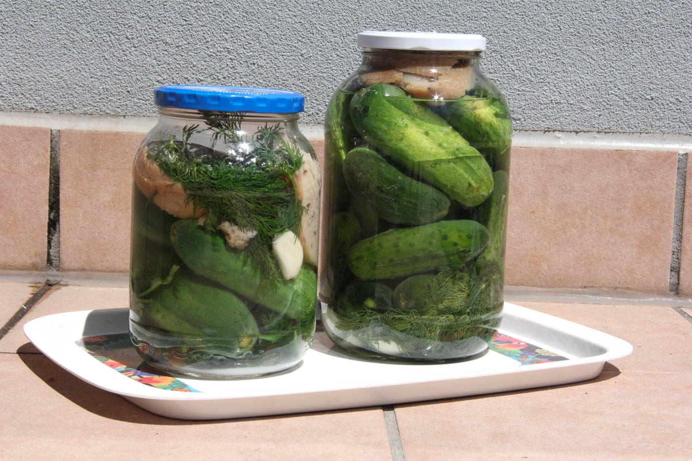 sun-pickles-60