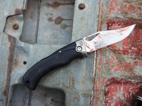 gerber knife for hunt