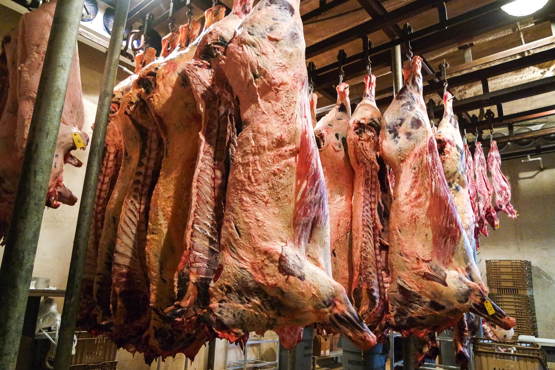 uvalde meat market carcasses